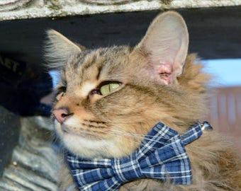 Blue plaid cat bow tie collar, Plaid collar, cat collar, Plaid cat bow tie, kitten bow tie, kitten Cat costume,cat bow tie, cat gift