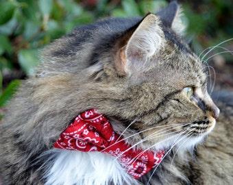 Cat bow tie, cat collar, red bandana cat collar, bandana cat bow tie, kitten bow tie, kitten collar, cat costume, western cat collar