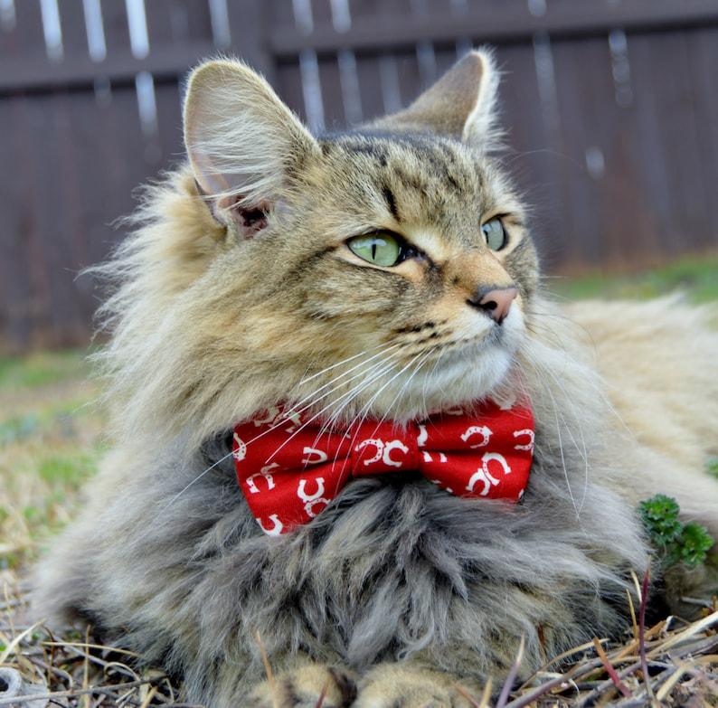 Cat bow tie, cat collar, cowboy cat collar, cowboy cat bow tie, western cat  bow tie, horseshoe cat bow tie, cat costume, dog bow tie, kitten