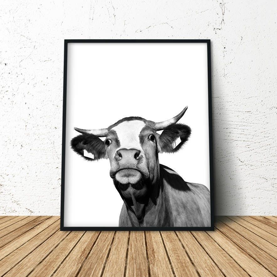 Cow Print Modern Farmhouse Cow Poster Cattle Photography