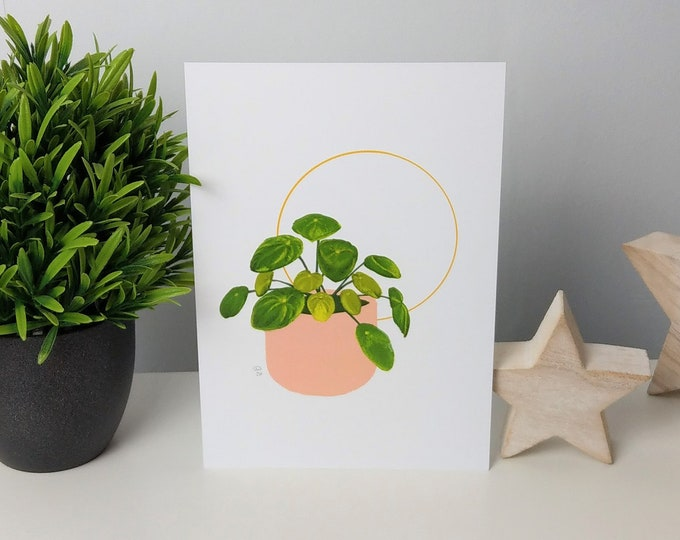 Yellow Halo Pilea houseplant art print
