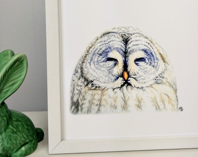 Watercolour owl painting print