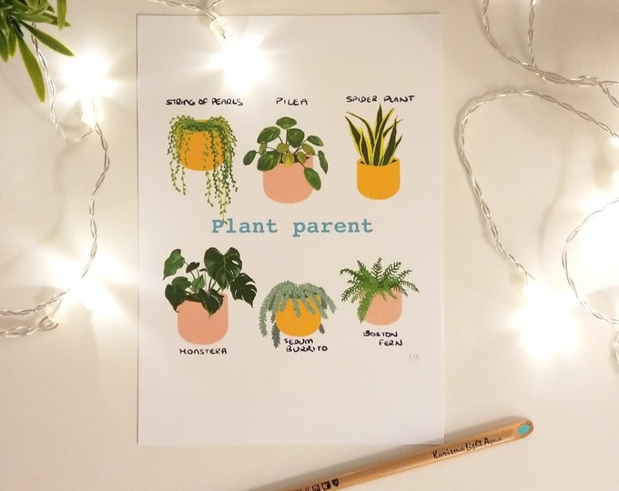 Houseplant succulent print A4 and A5