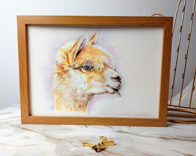 Alpaca llama watercolour print