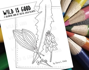Educational coloring book - original art - Wild is Good: a Coloring Book of Useful Wild Plants