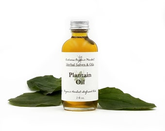 Organic Plantain Infused Oil, Minor Wound Herbal Body Oil in a Glass Bottle, Vegan