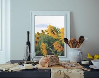 sunflowers, colby farm, newburyport, massachusetts, new england, photography, fine art print