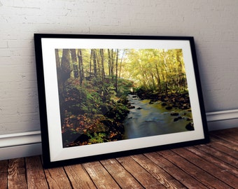 covered bridge, foliage, fall, autumn, nissitissit river, stream, brook, brookline, new hampshire, new england, photography, fine art print
