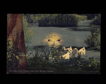 Indiana, Fort Wayne: Franke Park Bird Sanctuary C. 1940s linen Postcard lot #in1pc