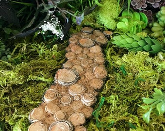 Miniature Tree Stump Path