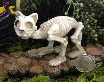 Miniature Cat Skeleton
