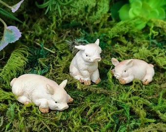 Miniature Baby Pigs/Piglets - Set of 3