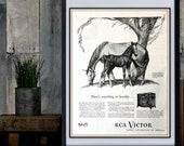 RCA Victor Horse AD 1945 Print Wall Art Vintage Horse Decor Vintage Advertisement Original TailorUponIt Vintage Finds