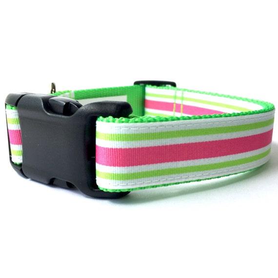"""1"""" large néon rose à rayures vertes et chaud pour animaux de compagnie collier de chien réglable avec boucle en plastique côté"""