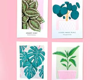 BUNDLE! Over it x Plant Magic Plant Print Bundle