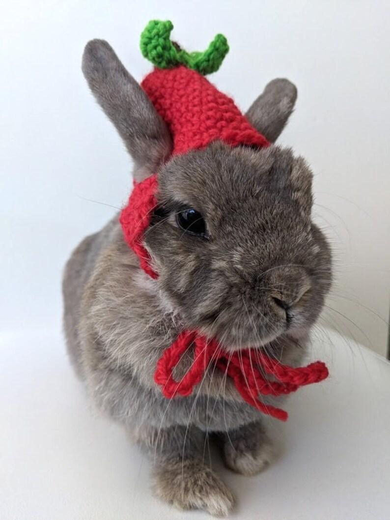 Cappello di Apple per coniglietti uncinetto cappello di apple  816c38233c38