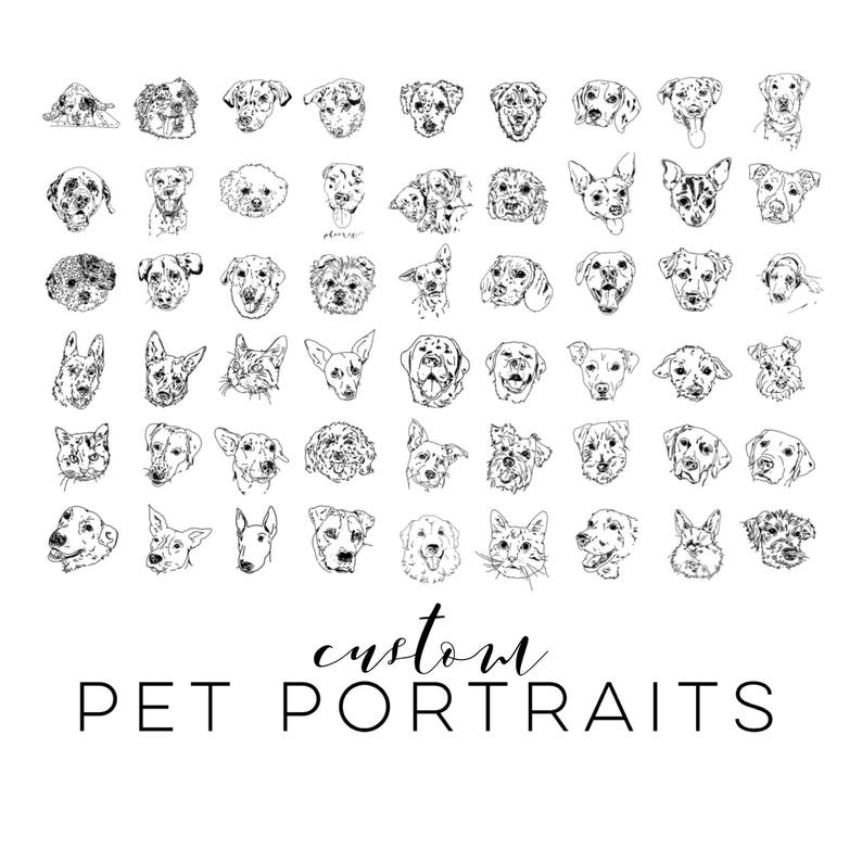 Pet Portrait Sketch  Rough Outline  Quick Black & White Line image 0