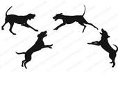 Hound Dogs SVG PNG digital download