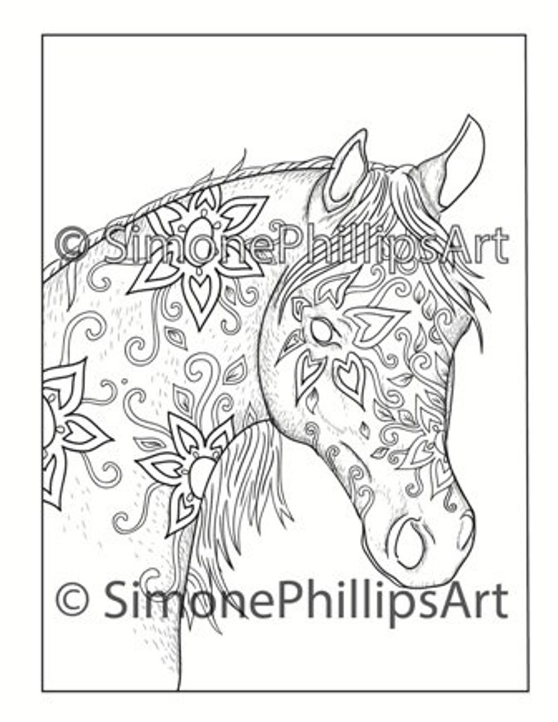 Horse Coloring Page Horse Drawing A Beautiful Arab Pony Etsy
