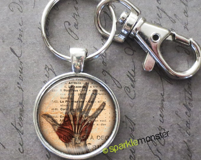 Anatomical Hand - 25mm glass tile keychain, silver, large swivel lobster claw, medical, muscles