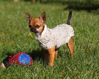 Crazy Chihuahua Lady-Dog Puppy Pet Felpa con Cappuccio Unisex Regalo