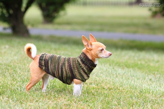 That's My Boy Collection * Chihuahua sweater * Chihuahua clothes * Hand knitted chihuahua sweater * Chihuahua gift * small dog sweater
