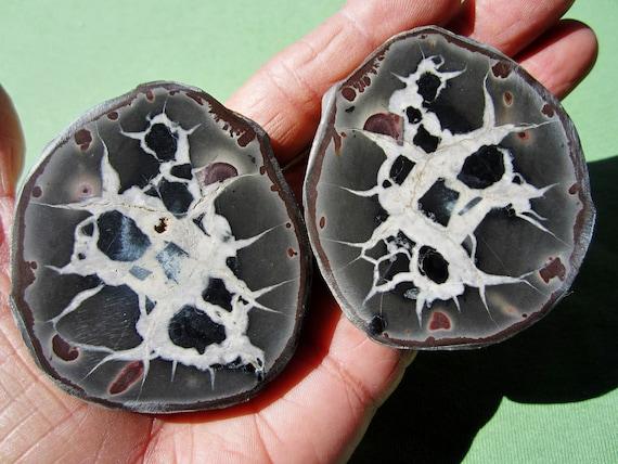 SEPTARIAN Nodule Polished Pair Geode Halves Morocco 262g
