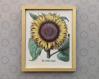 Miniature Sunflower Art,
