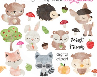 BUY5GET5 Woodland Clipart, Watercolor Forest Animals clip art, forest animal graphics, deer, hedgehog, fox, owl clipart, watercolor woodland