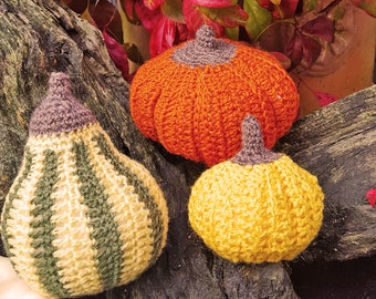 Large Pumpkin, Squash and Gourd Decor. Autumn Decor, Fall Decor,Thanksgiving, Halloween Decoration, Thanksgiving Table Decor,