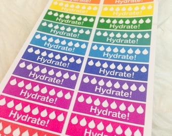 Hydrate Reminder Planner Stickers   Erin Condren & Plum Paper Palnner