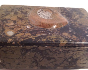 Ammonite fossil trinket box with lid, Snail, Natural, Polished, Ancient Rocks