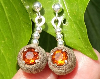 Earrings made of eucalyptus seed pod, citrine and Sterling silver spheres
