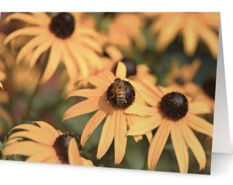 Black Eyed Susan Card