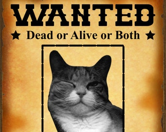 Schrodinger's Cat Wanted Poster - Printable Instant Download