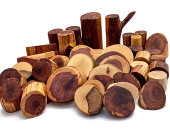 Pro Tree Block set ~45 piece~
