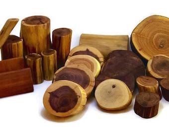 XL Tree Blocks ~22 piece~