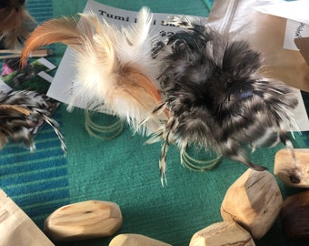 Feather accents