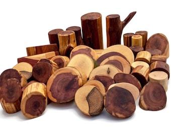 Tree Blocks 45 Piece Pro set