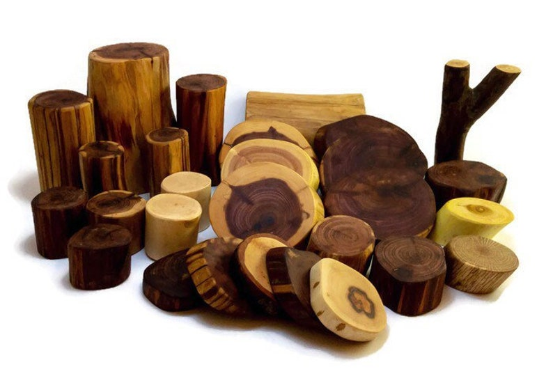 Tree Blocks 30 Piece Basic Set
