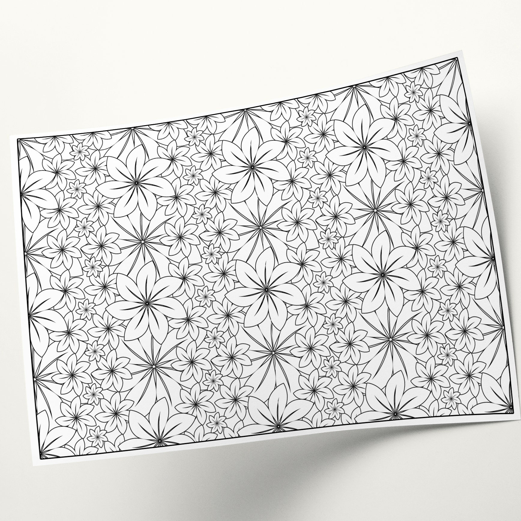 Coloring Pages Adult Coloring Floral Art Flower Illustration Etsy