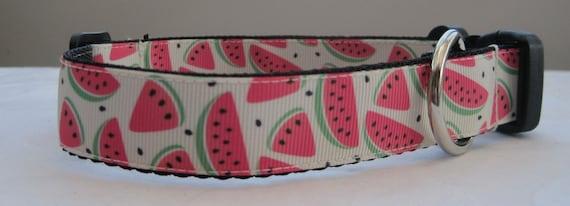 Melon d'eau col assorti plomb disponible fruits tropicaux
