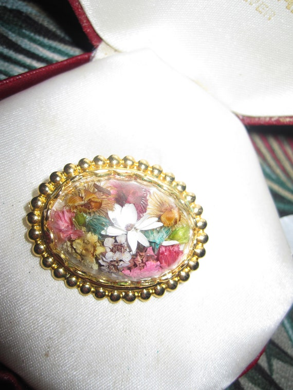 Lovely vintage goldtone domed brooch with dried flowers inside 1.1 inches