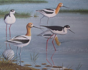 Black-Necked Stilts And American Avocets, 2015, Acrylic On Canvas, Original Painting, Richard Hull Fine Art
