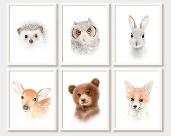 Nursery Prints, Woodland Animals, Watercolor Paintings For Children, Kids  Room Art, Nursery Decor, Animal Portraits, Pictures, Print Set 6