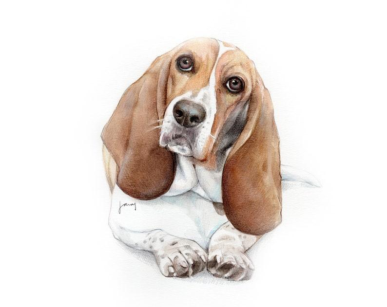 Custom Portrait Illustration Drawing Cat Art Commission Personalized Gift Pet Watercolor Painting Pet Portrait Pet Memorial Dog