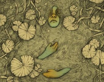 PRINT - Floating Along - Surreal Pond Nature Illustration