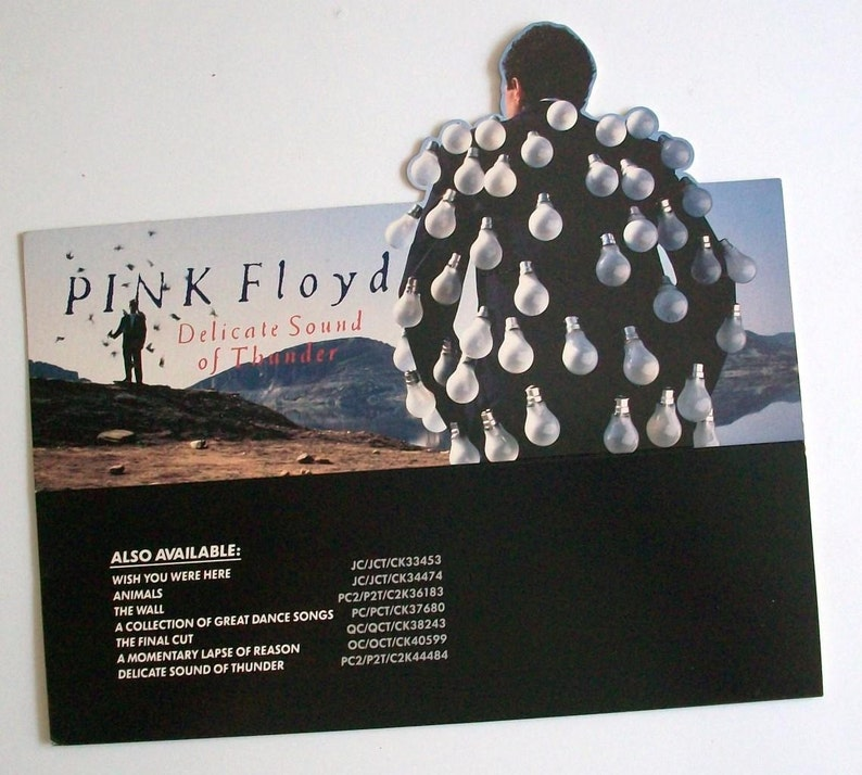 Pink Floyd Delicate Sound of Thunder 1988 Album Cover Canvas Art Poster Print Cd