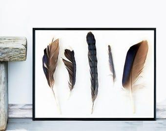 Feather print, Giclee Print, Minimalist Art, Feather Wall Art, Tribal Decor, Wall Art, Poster, Home Decor, Wall decor