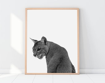 Wild Cat Print Nursery Animal Wall Art Kids Printable Art Black and White Cat Print Farm Animal Print Nursery Printable Kids Art Cat Art